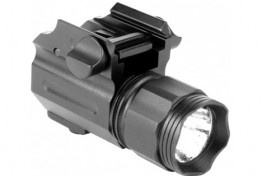 220 LUMENS SUB-COMPACT FLASHLIGHT